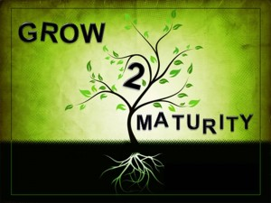 maturity-grown-up-300x225